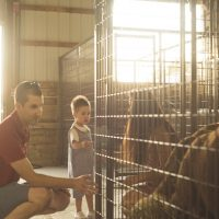 "Get Involved With ""Urban Farm"" In Stapleton"