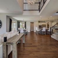 This Week in Stapleton Real Estate