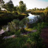 Sand Creek Greenway, Finding Wilderness in the City
