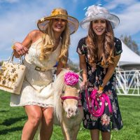 A Kentucky Derby Viewing Party with a Twist