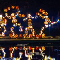 """Get """"Out of the Bubble"""" this Fall with these Fun Events around Denver"""
