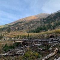 Hiking Colorado's Fourteeners!