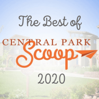 Top 20 of Central Park Scoop 2020
